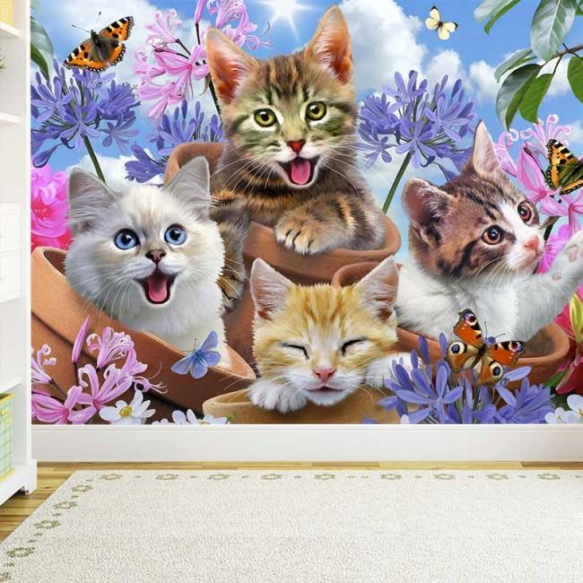 Foto Tapete Cool Kitties